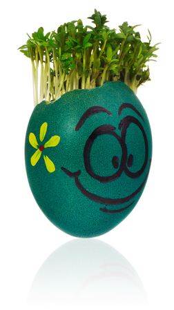 Hand painted easter egg in a funny happy smiling face of a guy with a cress like hair and multicolored designs. The watercress stylized for the hairstyle of the character. Egg in blue, yellow on a white background with a slight reflection.