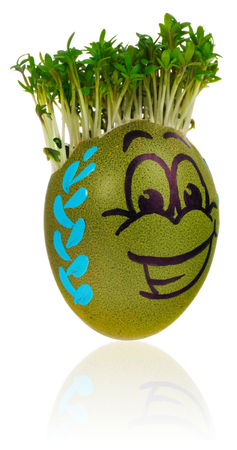 Hand painted easter egg in a funny smiley guy face and multicolored patterns with cress like hair. The watercress stylized for the hairstyle of the character. Egg in green and blue colors on a white background with a slight reflection.