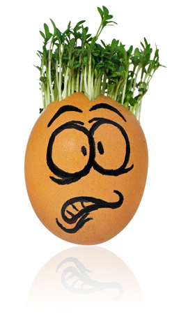 Hand painted Easter egg in a funny, terrified, frightened, surprised, face of a guy with cress like hair. The watercress stylized for the hairstyle of the character. Egg in a natural color on a white background with a slight reflection.