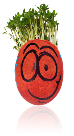 Easter egg painted in a funny smiley  guy face and colored in patterns with cress like hair. The watercress stylized for the hairstyle of the character. Egg in red and blue colors on a white background with a slight reflection. Stock Photo