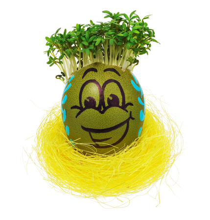 Easter egg painted in a funny smiley face and colorful patterns in a yellow birds nest with cress like hair. Stock Photo