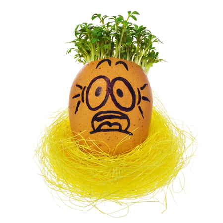 Hand painted Easter egg in a funny, terrified, frightened, surprised, face of a guy with cress like hair in a yellow birds nest. The watercress stylized for the hairstyle of the character. Egg in a natural color on a white background with a slight reflection.