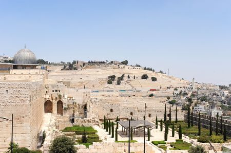 view of mount of olives  photo
