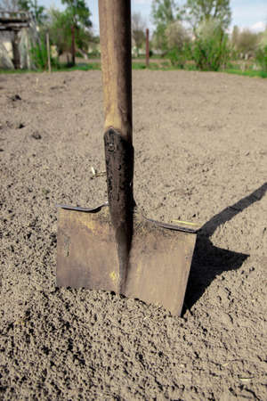 Digging spring soil with shovel. Close-up. Shovel on the ground, concept of gardening.