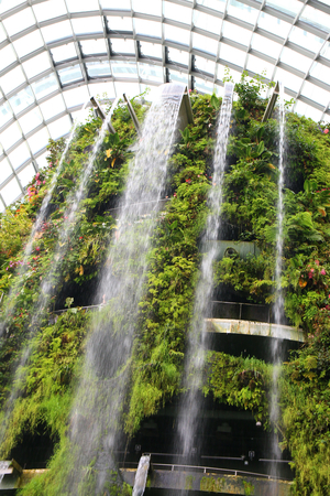 Cloud forest in the gardens by the bay singapore