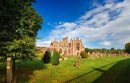 the abbey: Melrose Abbey