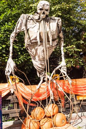 skeleton and pumpkins at lunapark gardaland in verona italy for halloween