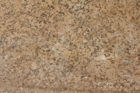 Cork board texture photo