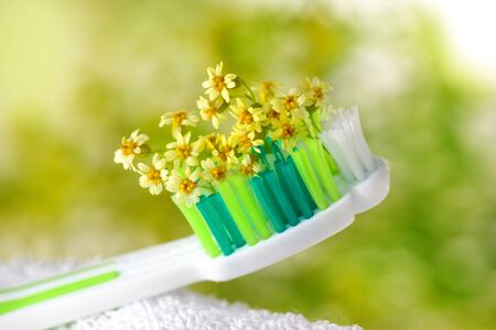 Toothbrush with tiny flowers. Healthcare Stock fotó