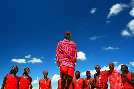 warrior tribal: Masai warrior dancing traditional dance. Africa. Kenya. Masai Mara.