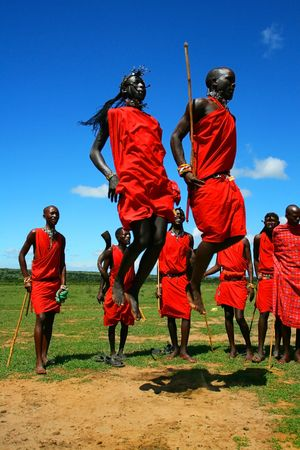 masai: Masai warrior dancing traditional dance. Africa. Kenya. Masai Mara.