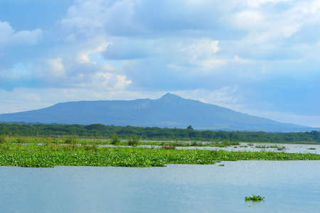 lake naivasha: Peaceful view on lake Naivasha. Africa. Kenya Stock Photo