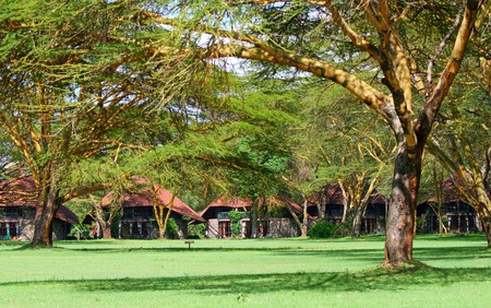 Tourist resort in a woods of Africa Stock Photo - 6895323