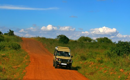 Safari. Afrika. Kenia. Masai Mara