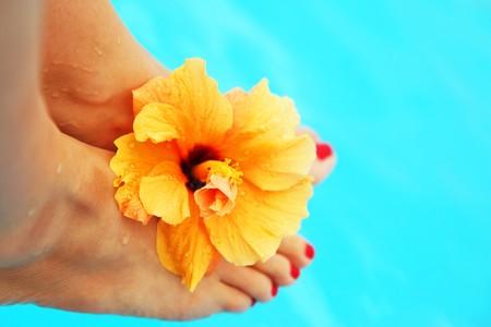 休暇のプールの概念イメージで美しい女性の足