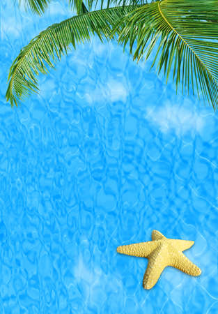 Water background with starfish conceptual image of vacation and summertime photo