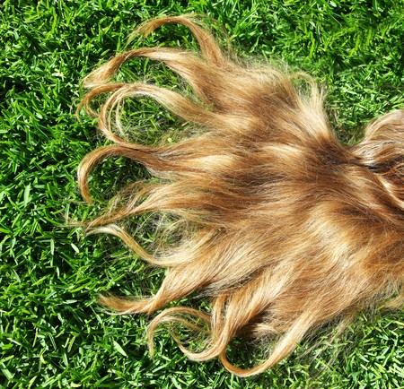 Closeup on beautiful blond hair over spring grass  photo