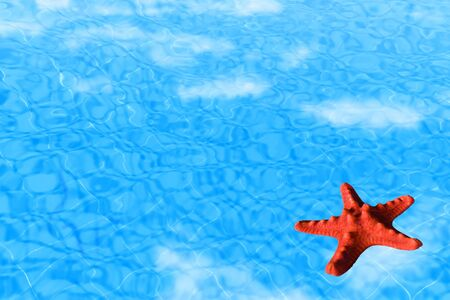 Water background with red starfish conceptual image of vacation and summertime photo
