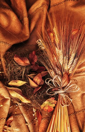 Grunge wheat background with autumn leaves photo