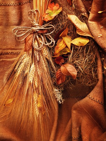 Grunge wheat background with autumn leaves Stock Photo - 7664988