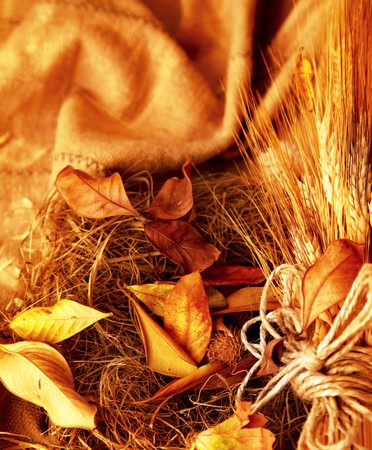 Grunge wheat background with autumn leaves Stock Photo - 7665011