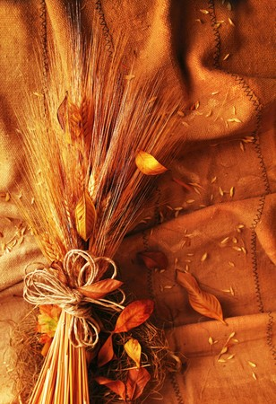 Grunge wheat background with autumn leaves Stock Photo - 7665012