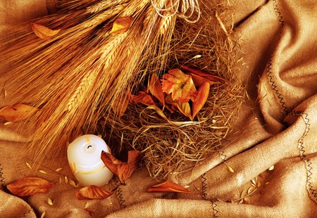 Autumn wheat background with leaves & candle Stock Photo - 7753325