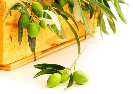 Fresh green olives isolated on white background photo