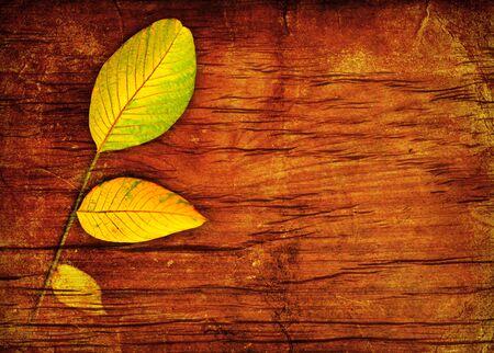 wooden pattern: Autumn leaves su sfondo di legno
