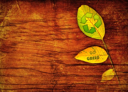 Recycle symbol on the leaf wooden background photo
