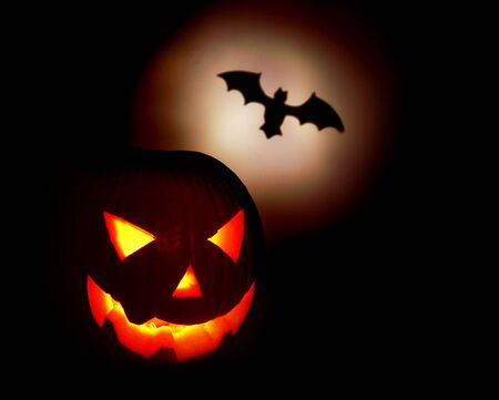 Halloween pumpkin and bat isolated on black background photo