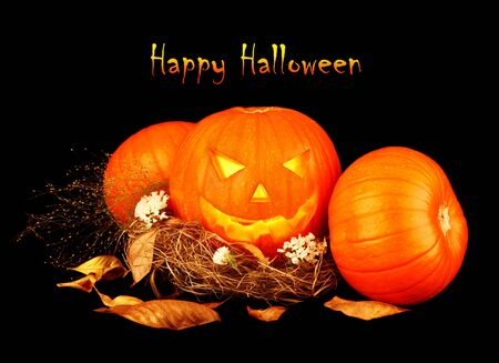 Scary halloween pumpkins isolated on black background Stock Photo - 8015188