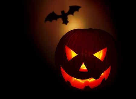 Halloween pumpkin and bat isolated on black background Stock Photo - 8015182