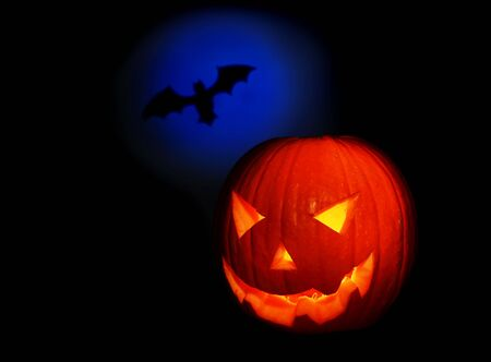 Halloween pumpkin and bat isolated on black background Stock Photo - 8015183