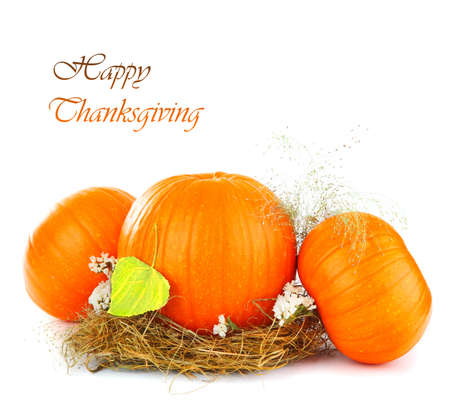 Thanksgiving holiday greeting card with gourd isolated on white background Stock Photo - 8108059