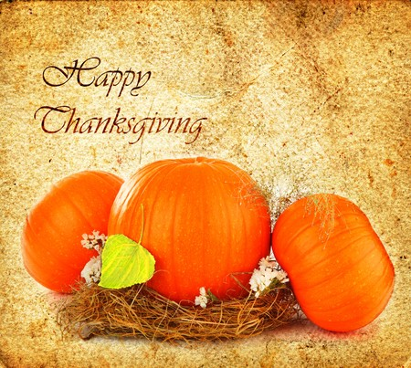 Thanksgiving holiday greeting card with orange gourds photo
