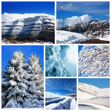 Beautiful winter collage, collection of cold weather landscapes with mountains & trees covered with snow over blue sky photo