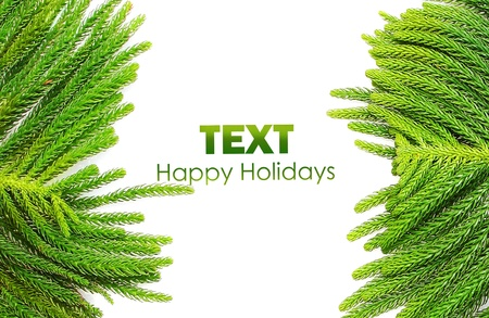 branche sapin noel: Beautiful green fir holiday border isolated on white background, Christmas tree branch