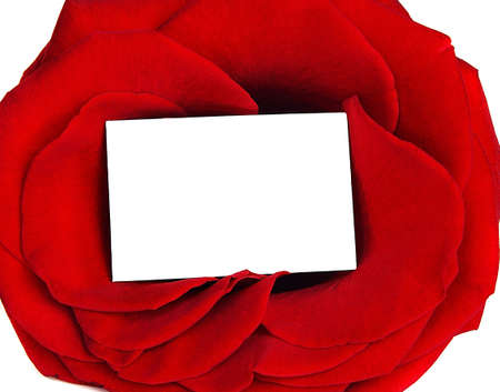 Rose frame & blank greeting card isolated on white background, conceptual image of love & Valentines day holiday photo