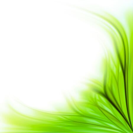 curl: Beautiful fresh green grass flower border background isolated on white
