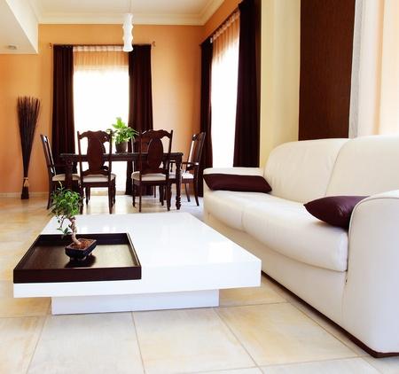 Luxury apartment with stylish modern interior design Stock Photo - 8749941