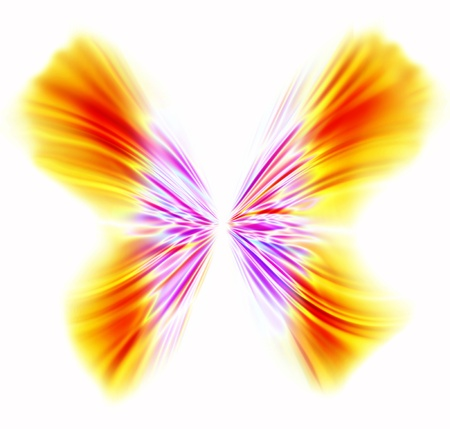 Beautiful digital butterfly, designed logo isolated on white background  Stock Photo - 8876016