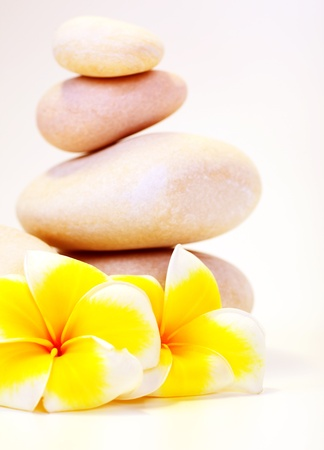Spa stones & flowers isolated on white background, concept of vacation, relaxation, meditation & healthy balanced lifestyle photo