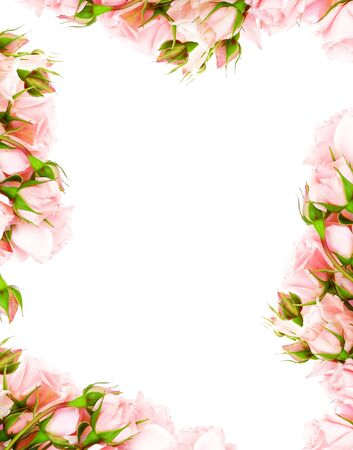 Fresh pink roses frame border isolated on white background photo