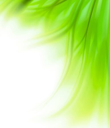 abstract swirl: Beautiful fresh green grass flower border background isolated on white
