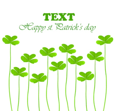 Green clover holiday border, st.Patrick's day decoration isolated on white background with text space Stock Photo - 8968112