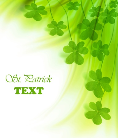 lucky clover: Green clover holiday border, st.Patricks day decoration isolated on white background with text space