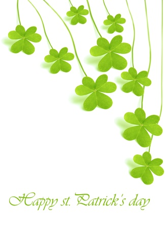 st  patrick: Green clover holiday border, st.Patricks day decoration isolated on white background with text space