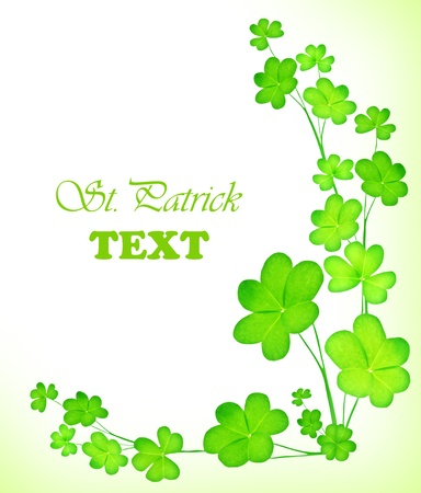 Green clover holiday border, st.Patricks day decoration isolated on white background with text sp photo