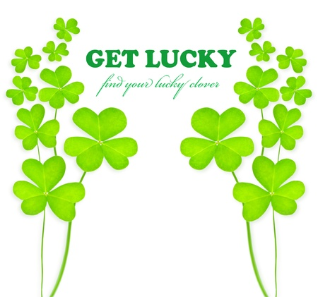 Green clover holiday frame, st.Patrick's day decoration isolated on white background with text space Stock Photo - 8980778